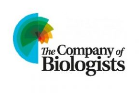 MALMAD Reaches Three-Year Transitional OA Agreement with The Company of Biologists_News & Updates-33